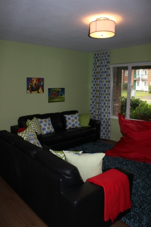 We were donated this red beanbag chair so we decided to run with it and integrate red throughout the room.